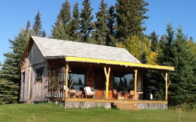 Fiddlehead Cabin